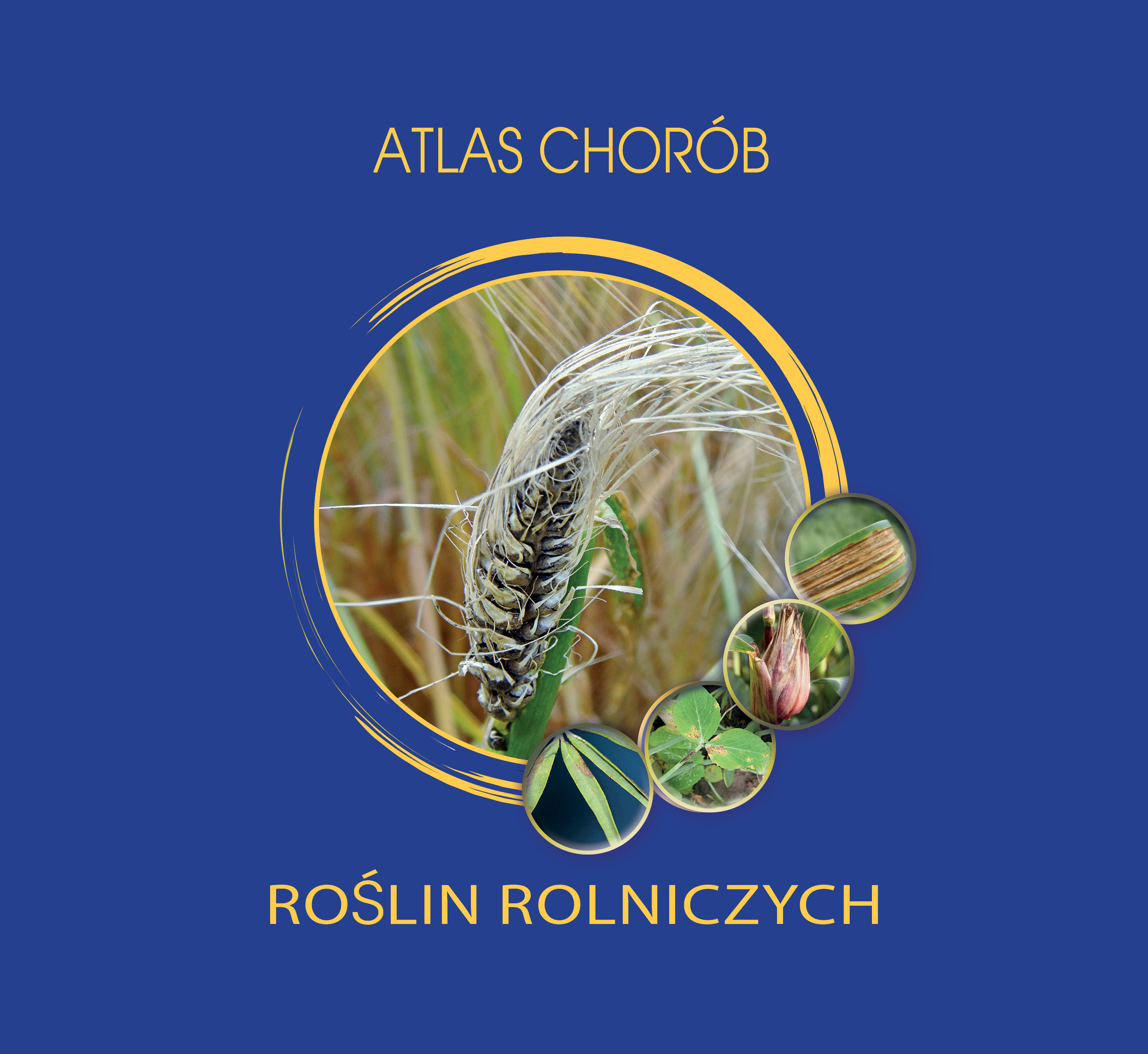 atlas_chorob_okladka