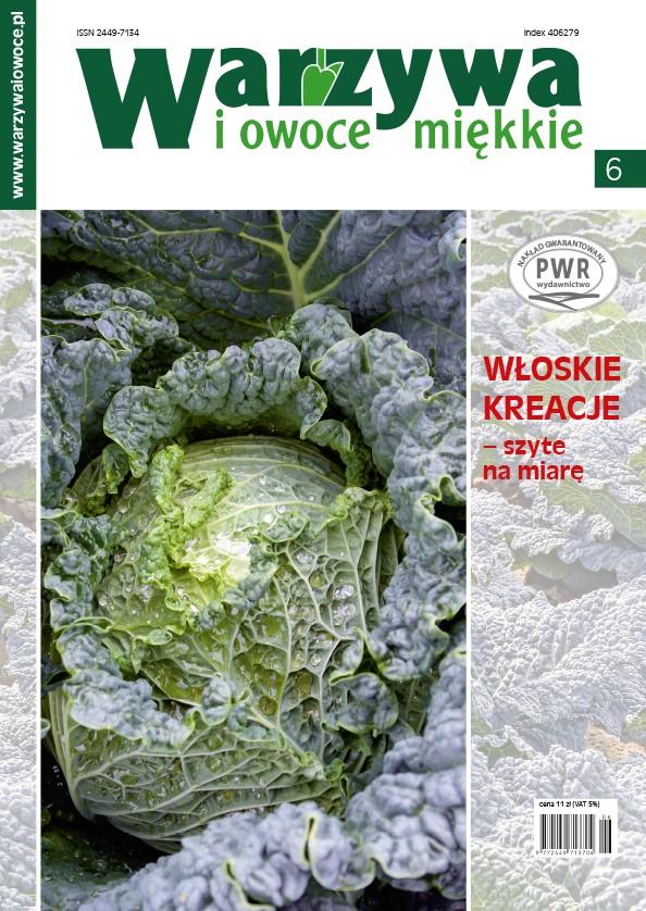 okladka-wiom-6-2017