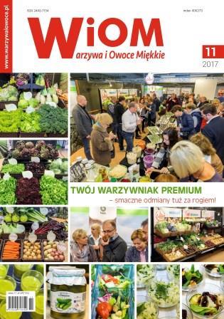 okladka-wiom-11-2017