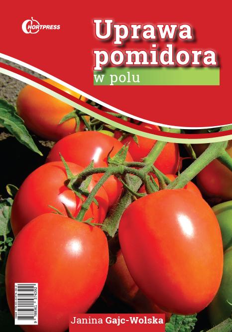 uprawa_pomidora