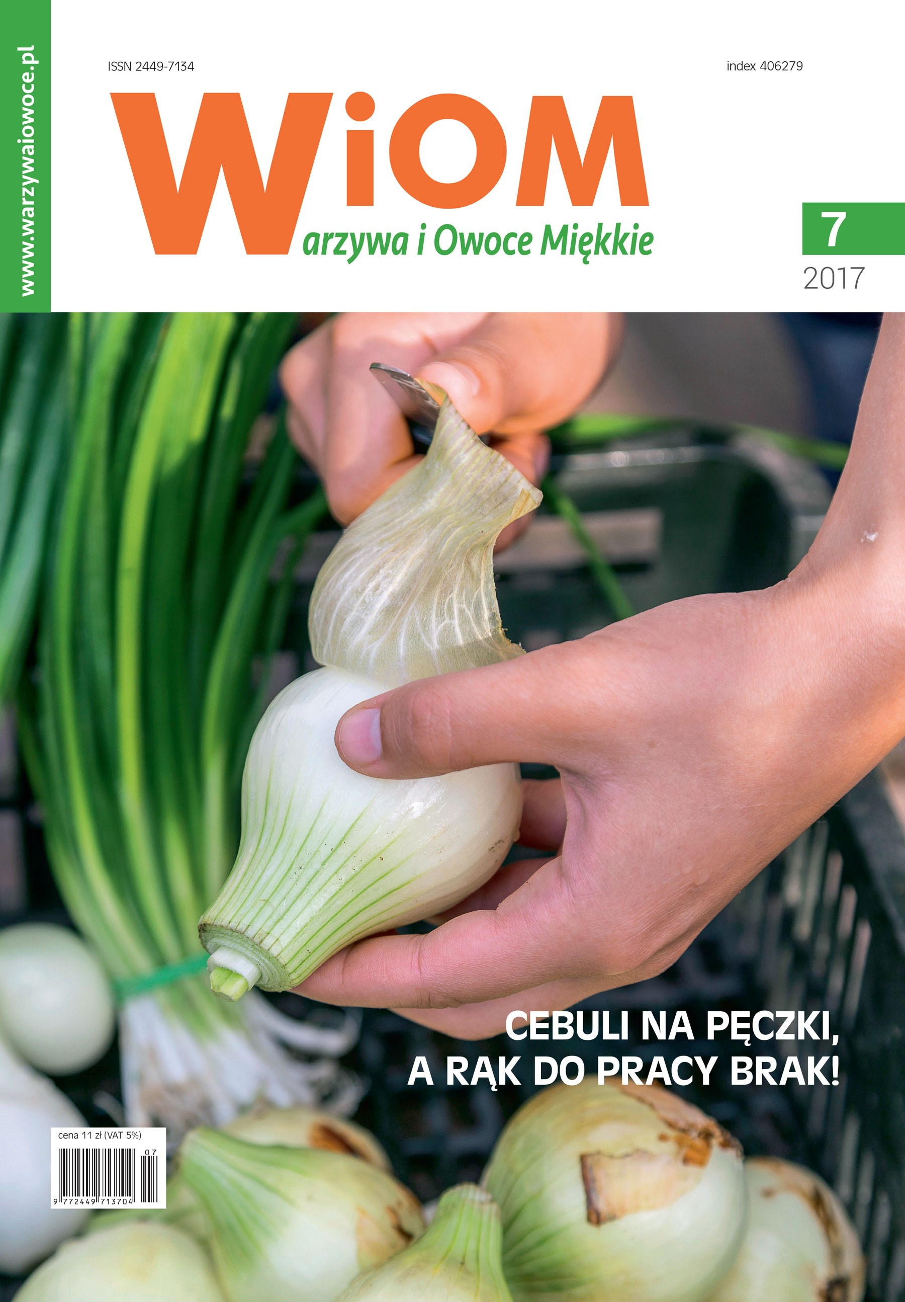 okladka-wiom-7-2017